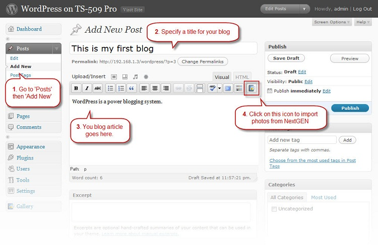 Write a blog entry