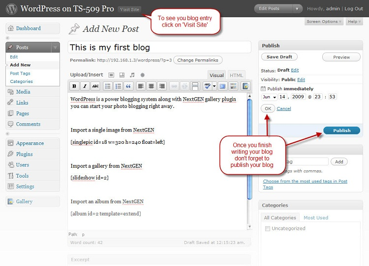 Publish your blog