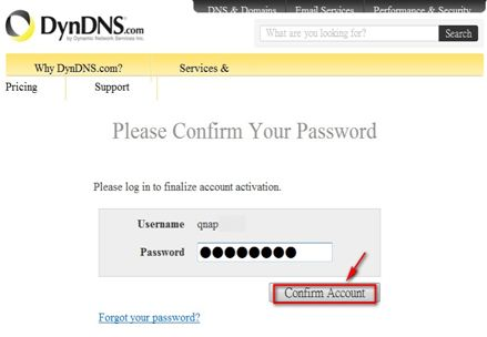 After account confirmation, login the DDNS service