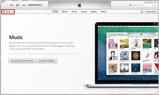 Locate the service in iTunes